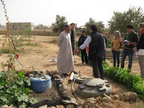 team Project in the MENA region